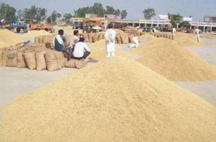 बीते साल से 500 रुपए कम मिल रहा किसानों को धान का भाव