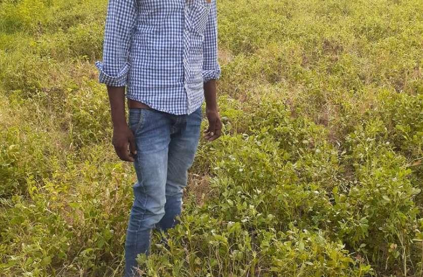 किसानों को नहीं मिली फसल बीमा की राशि, सीएम हेल्पलाइन पर 80 शिकायतें
