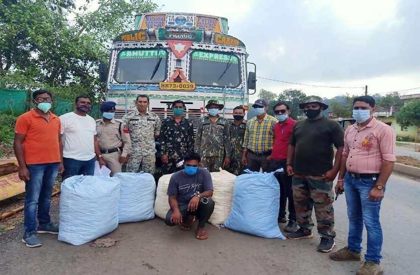 कवर्धा : ट्रक में छुपाकर 214 किलो गांजा तस्करी करते हरियाणा का ड्राइवर गिरफ्तार, अंतरराज्यीय नेटवर्क से जुड़े तार
