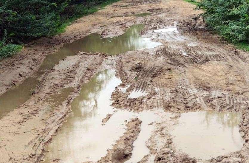 ग्राम पंचायतें बरत रही है अनदेखी, टूटी सडक़ों पर जमा है कीचड़
