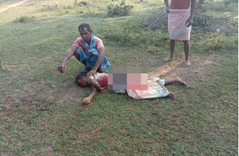 हाथी ने जंगल गई किशोरी को सूंड से उठाकर पटका, जान बचाकर भागीं 3 सहेलियां, वन विभाग लोगों को नहीं कर पा रहा अलर्ट