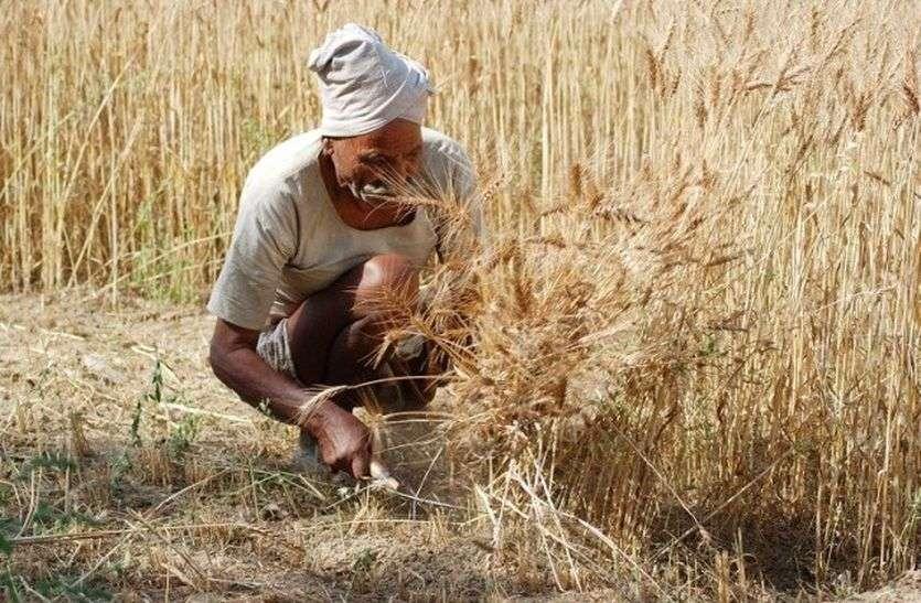 राजस्थान में 3 दिन से किसानों को नहीं मिल रहा ऋण