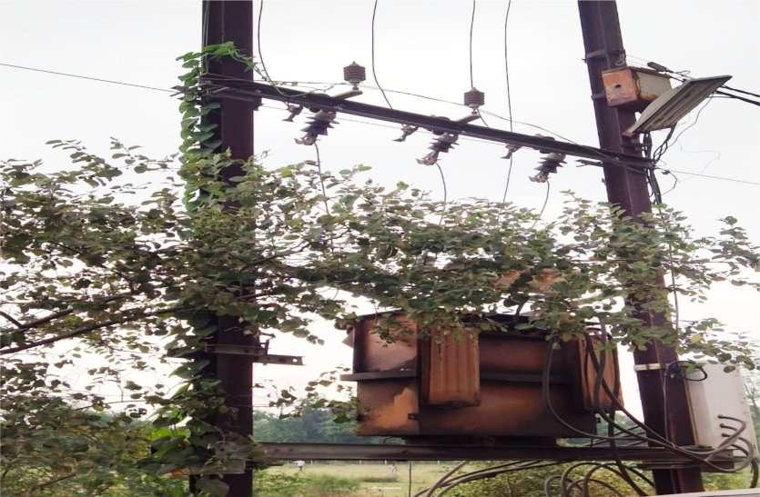 मृतकों के परिजन का आरोप, रुपए मांगते है बिजली कंपनी के कर्मचारी