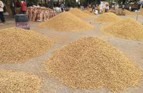 किसानों को लगा करोड़ों का फटका, समर्थन मूल्य पर खरीद का इंतजार