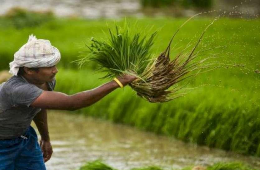 यूपी के किसानों के लिए अच्छी खबर, फसल बेचने के लिए नहीं भटकना होगा इधर-उधर, अनाज भंडारण के लिए बनेंगे पांच हजार गोदाम