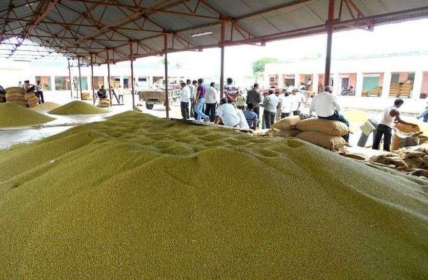जोधपुर कृषि मंडी के भाव 28 अक्टूबर को इस प्रकार रहे...
