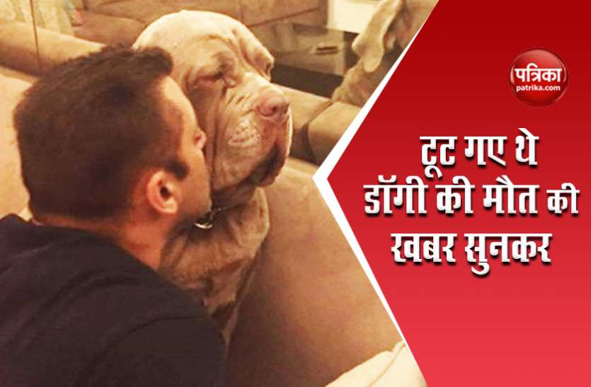 शूटिंग के दौरान Salman Khan को मिली थी डॉगी की मौत की खबर, फार्महाउस पर दफनाकर करने लगे थे काम