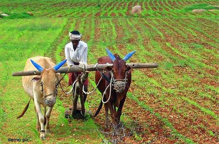 छोटे किसानों के लिए अच्छी खबर, पांच एकड़ तक जमीन अब नहीं हो सकेगी कुर्क व नीलाम