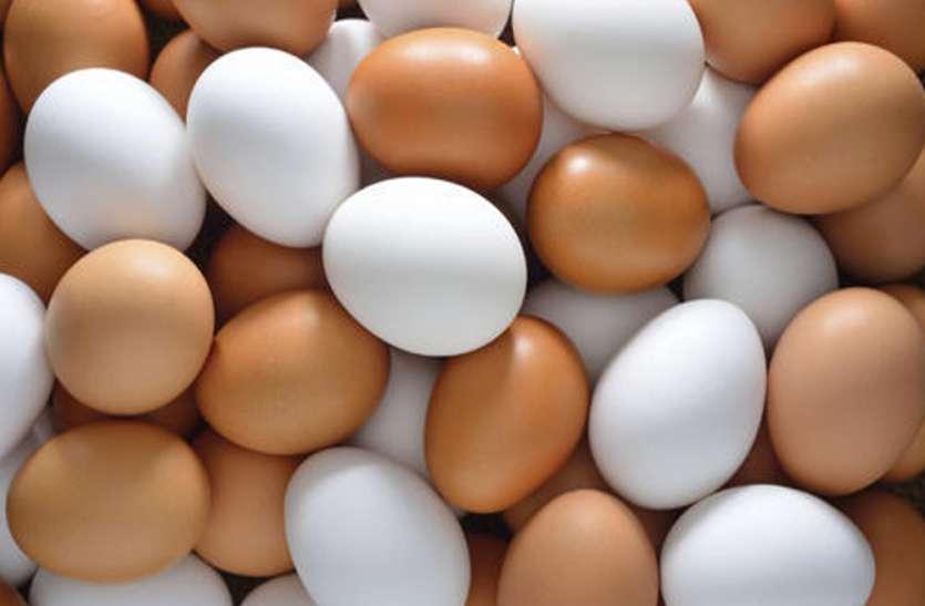 आलू व प्याज के बाद महंगा हुआ अंडा, दीपावली के बाद और बढ़ेंगे दाम, जानिए क्या हैं अभी के भाव