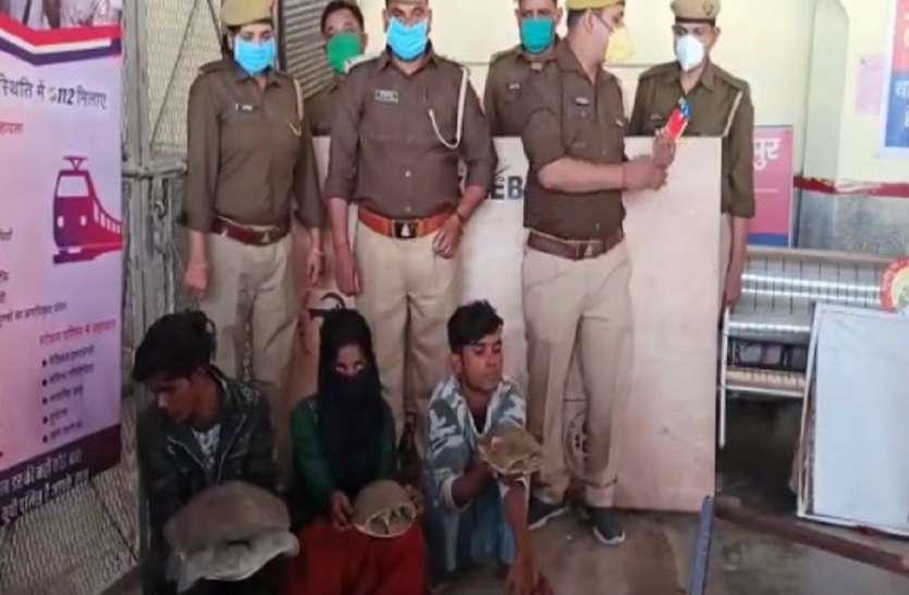 दीपावली पर तस्कर बेचने के लिए ले जा रहे थे कछुआ, जीआरपी रेलवे ने किया गिरफ्तार