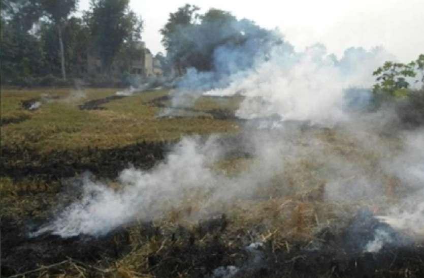 यूपी प्रदूषण नियंत्रण बोर्ड का अलर्ट,पंजाब की पराली प्रदूषित करेगी उत्तर प्रदेश और दिल्ली की हवा
