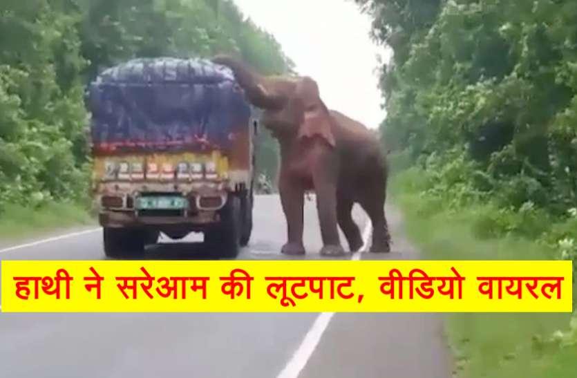 हाथी ने की हाईवे पर दिन दहाड़े लूटपाट, वीडियो वायरल