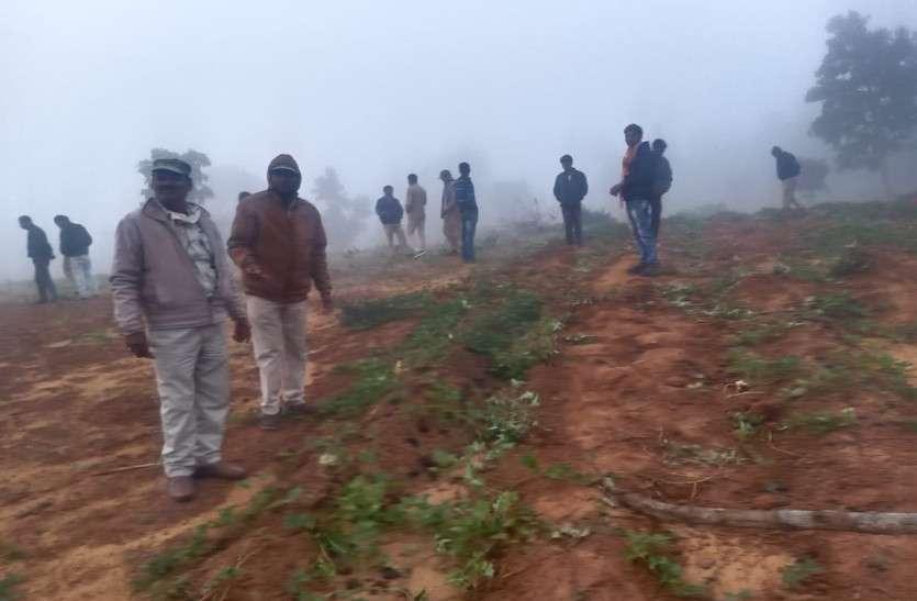कोरिया में दो दल में 74 हाथी, 15 किसानों की रौंद डाली फसलें, 5 घर तोड़े और मवेशी को भी मार डाला