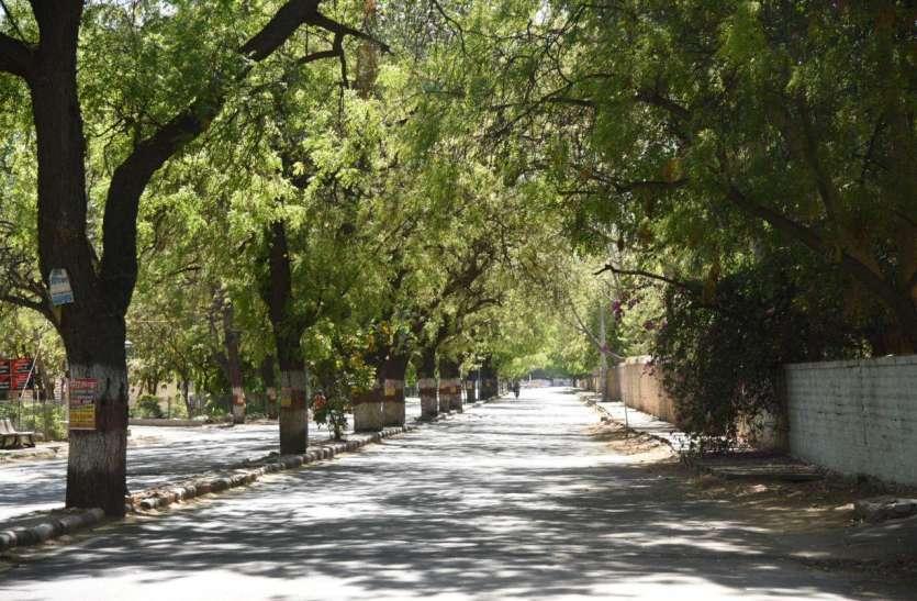 जयपुर-जोधपुर में पहाड़ों जैसी साफ हवा