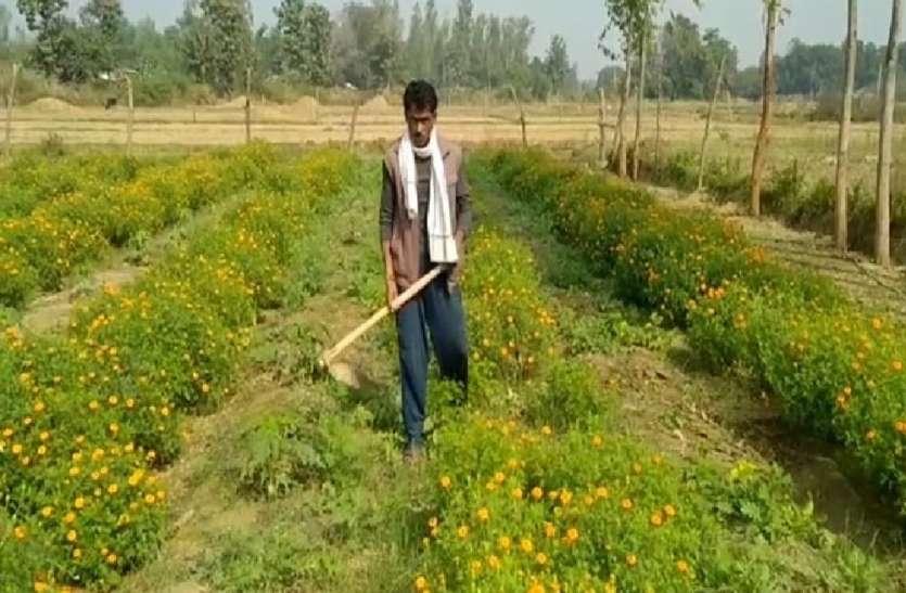 नई पहल, लॉकडाउन में छिना रोजगार, तो गांव में फूलों की खेती से बदल डाली अपनी तकदीर