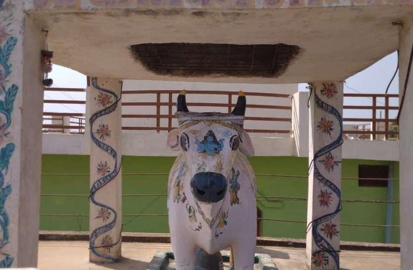 गोवंश वृद्धि और समृद्धि के लिए बनवाया गो माता का मंदिर