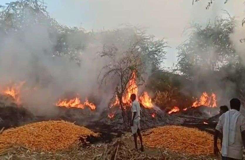 पांच बीघा मक्का की फसल जलकर नष्ट