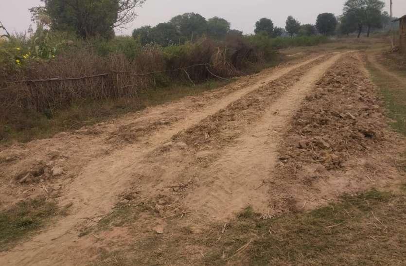 बिना वर्क मांग के ही पंचायत ने शुरू कर दी 14 लाख की ग्रेवल सडक़ का निर्माण