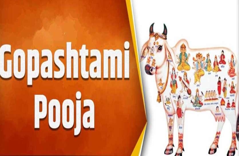 Gopashtami गले में विष्णु, मुख में रहते हैं रुद्र, जानें कैसे और कहां बनता है गाय के शरीर में सोना