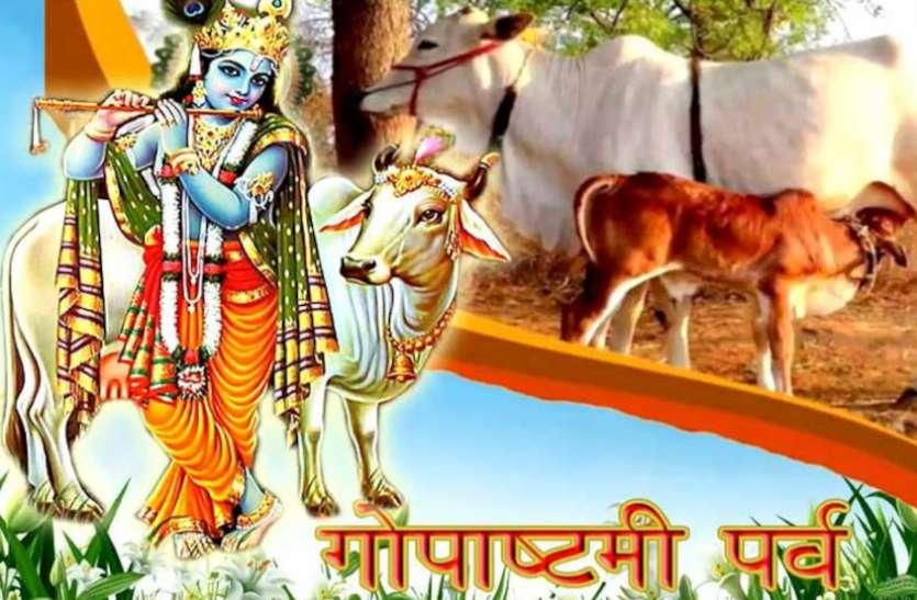 Gopashtami 2020 गाय की पूजा और दूधवालों के सम्मान का दिन, इस शुभ मुहूर्त में करें गौमाता की पूजा
