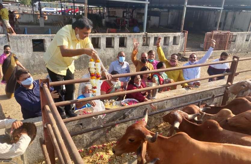 SURAT NEWS: गोविंद बोलो हरि गोपाल बोलो...गोशाला में गूंजा