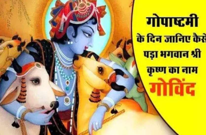 Gopashtami Story कन्हैया ने इसी दिन शुरू किया था गाय चराना, जानें श्रीकृष्ण के गोविंद बनने और राधा के ग्वाला बनने की कथा