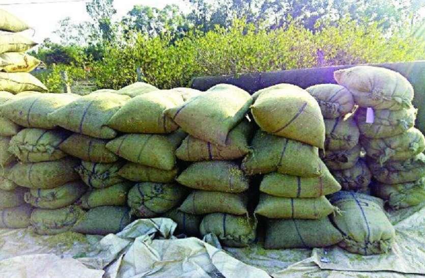 रीवा के बाद अब कटनी में गैर प्रांत के धान खपाने वालों पर सख्ती