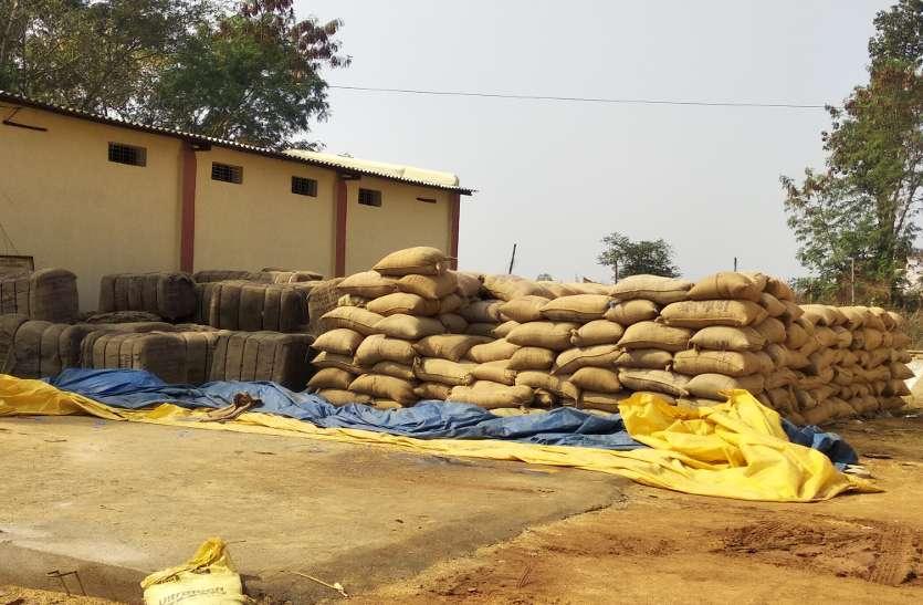 धान धरीदी की तैयारी: 20 सहकारी समिति में पीडीएस से पहुंचा बारदाना, पंजीकृत किसानों को एसएमएस से मिलेगी सूचना