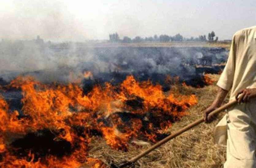 पराली जलाना पड़ा महंगा, 50 किसानों पर एफआईआर, 36 से वसूला गया जुर्माना
