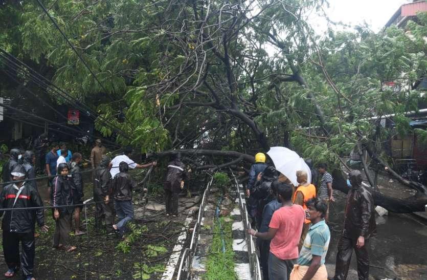 चक्रवात निवार का तमिलनाडु में असर शुरू, तेज हवाओं के साथ मूसलाधार बारिश