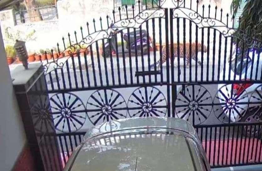 VIP कॉलोनी में घूमता तेंदुआ CCTV में कैद, लोगों को घरों में रहने की चेतावनी, वन विभाग तलाश में जुटा