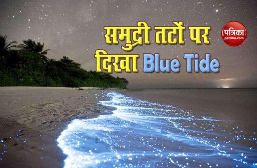 जानिए क्यों चर्चा में है Blue Tide,  देश के इन समुद्री तटों पर दे रहा दिखाई