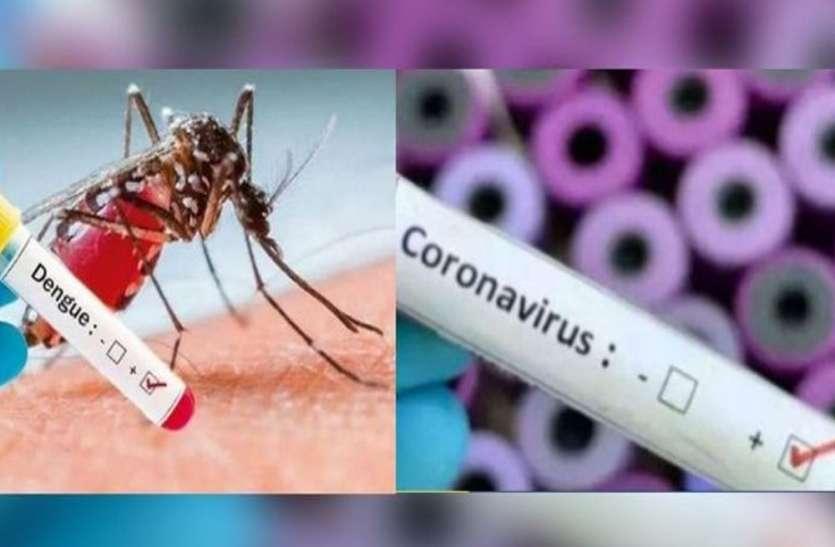 Dengue Panic: कोरोना संक्रमण के बीच डेंगू की दहशत, बीते 24 घंटे में 22 और मरीज रिपोर्ट, अब तक 195