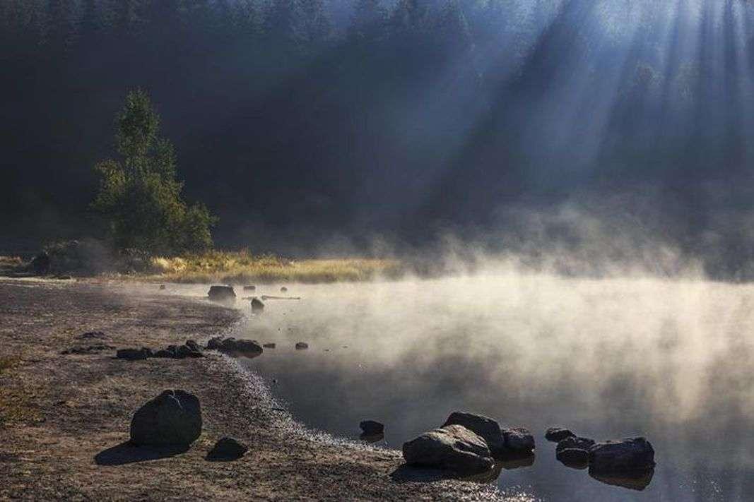 न्यू रिसर्च: वैज्ञानिकों का दावा, जो पानी हम इस्तेमाल करते हैं उसका अधिकाँश हिस्सा डायनासोर के मूत्र से बना है