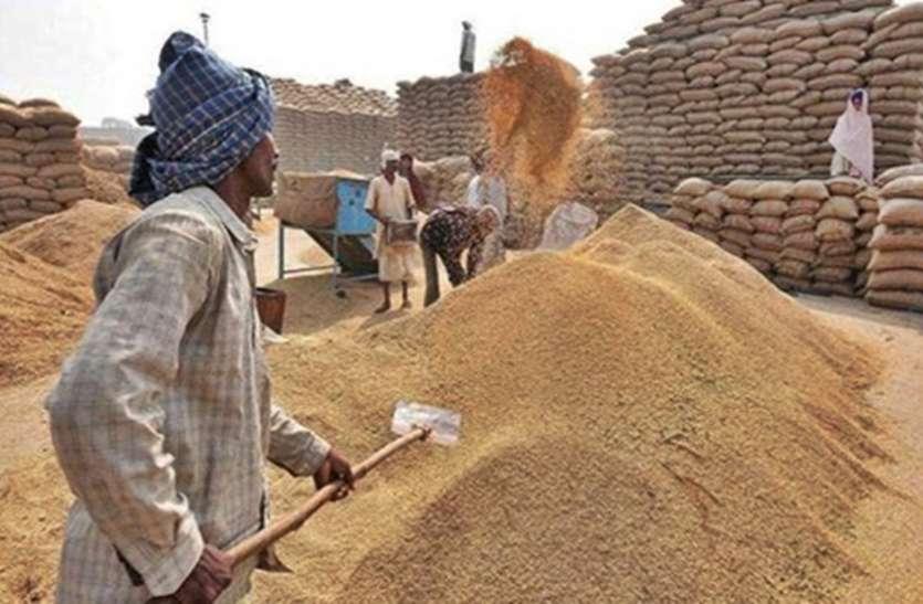 1 दिसंबर से धान खरीदी, अब तक 52 हजार 705 किसानों को टोकन