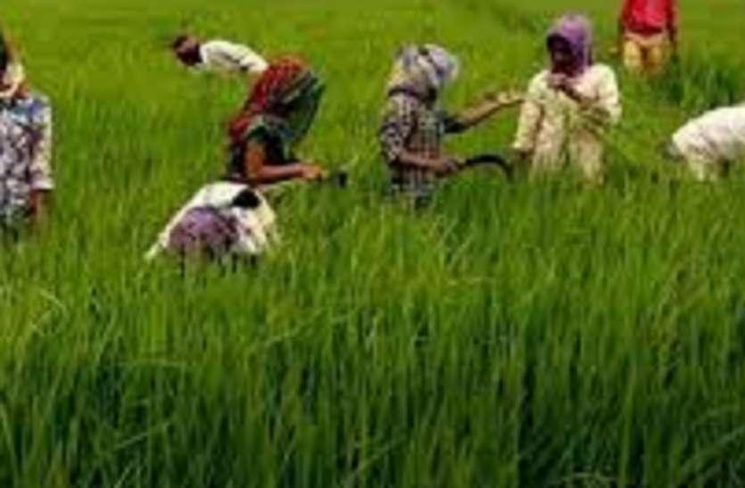 डीएमके, कांग्रेस समेत अन्य सहयोगी दल कृषि बिल के विरोध में उतरे