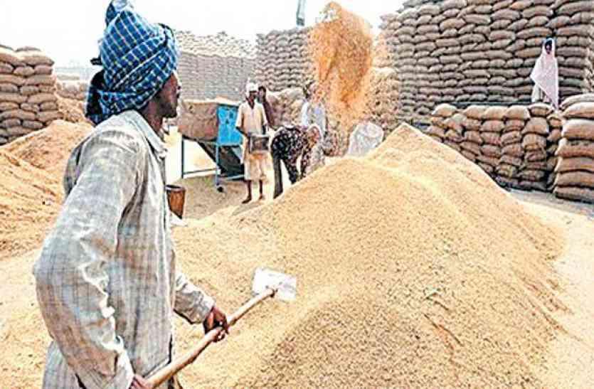 आज से धान खरीदी शुरू, पहले दिन 888 किसान बेचेंगे धान