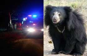 खूंखार भालू के हमले से दंपती गंभीर, चार ग्रामीणों ने पेड़ पर चढ़कर जान बचाई