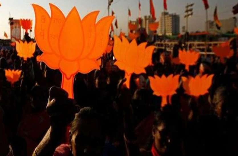 BJP's symbol on Lotus crisis, High Court seeks response from Election Commission