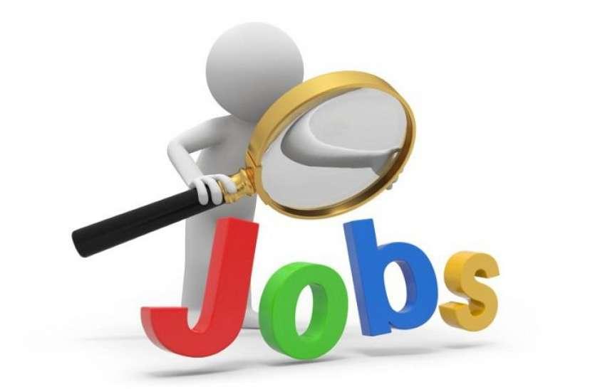 Latest Jobs 2021: असिस्टेंट अकाउंटेंट के पदों पर निकली नौकरियां, यहां से करें अप्लाई