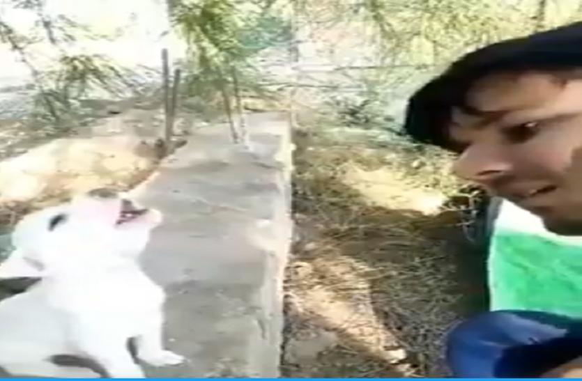 शख्स को गाना गाता देख कुत्ते ने भी छेड़ दिए सुर, वायरल हो रहा है Video