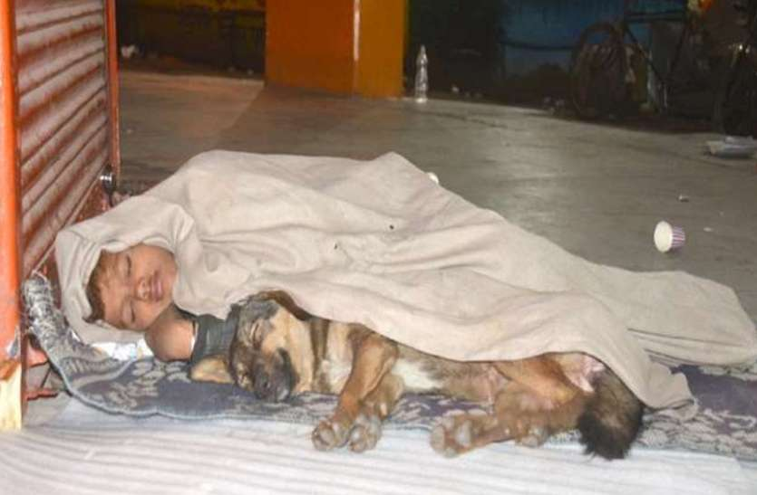 पिता जेल में तो मां ने भी साथ छोड़ा, कुत्ते के साथ जीवन बिता रहा मासूम, दिल को झकझोर देगी ये दास्तां