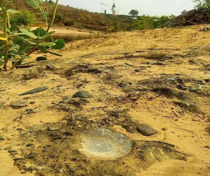 छत्तीसगढ़ के इस जिले में 28 करोड़ साल पुराने समुद्री जीवाश्म के सबूत मौजूद, संरक्षित फॉसिल्स व गार्डन बदहाल