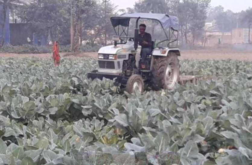 मंडी में कम रेट मिलने से परेशान किसान ने फसल पर चला दिया था ट्रैक्टर, मोदी सरकार ने की मदद