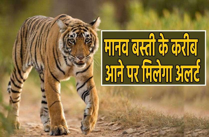 अब बाघों पर रहेगी पैनी नजर, हर मूवमेंट की मिलेगी सटीक खबर