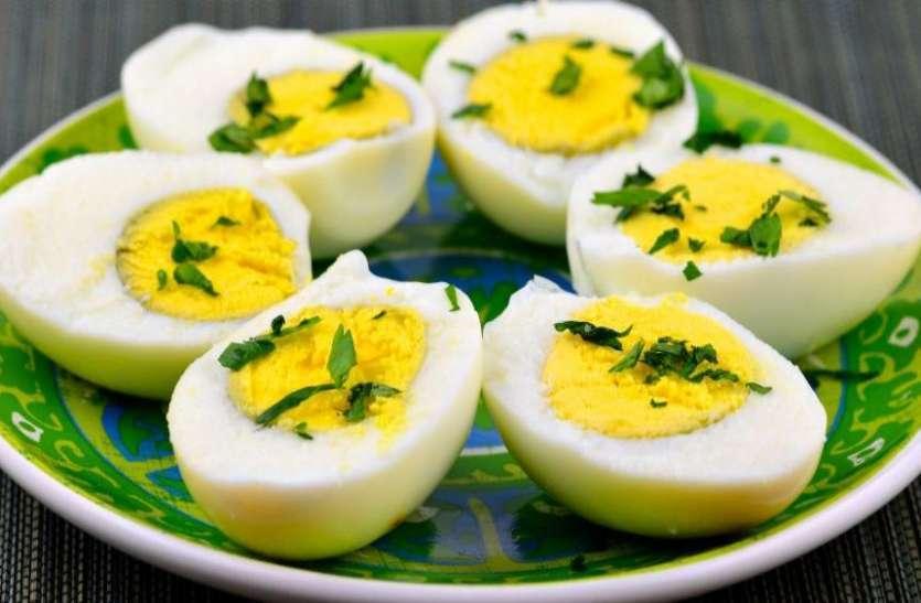 IIT दिल्ली के वैज्ञानिकों ने बनाया शाकाहारी अंडे, भरपूर मात्रा में मिलेगा प्रोटीन !