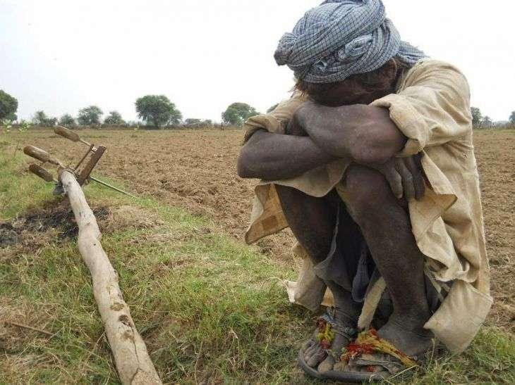 farmer-1448109382_835x547.jpg