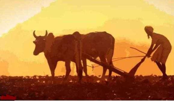 farmers-day.jpg