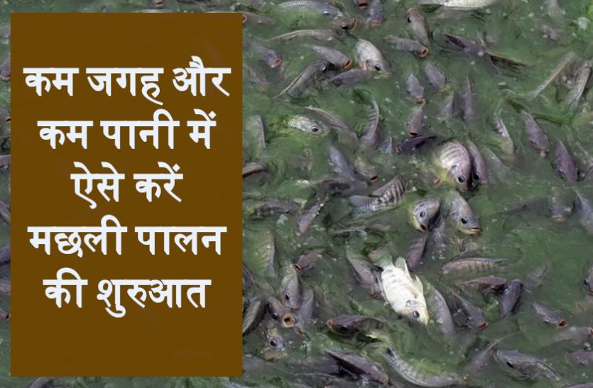 Kisan Diwas 2020: कम जगह और कम पानी में ऐसे करें मछली पालन की शुरुआत, जानें पूरी डिटेल्स