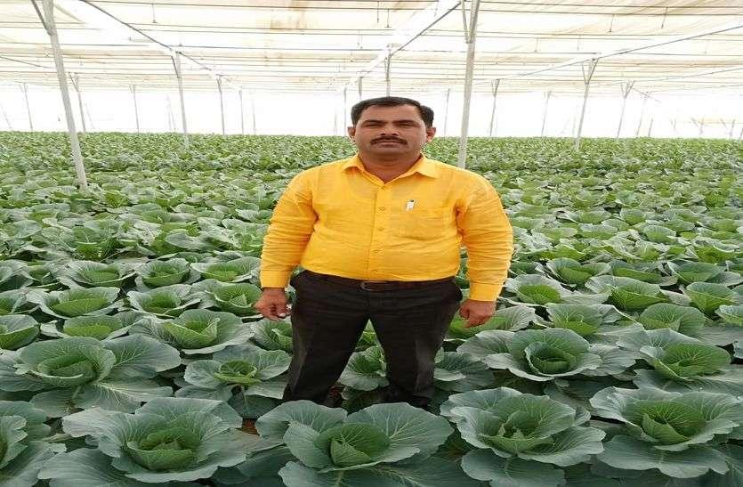 VIDEO देशावर में नौकरी छोड़कर तैयार की नर्सरी, अब पौधे बेच कर कमा रहे लाखों